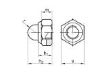 DIN 986 Hutmutter Stahl  verzinkt